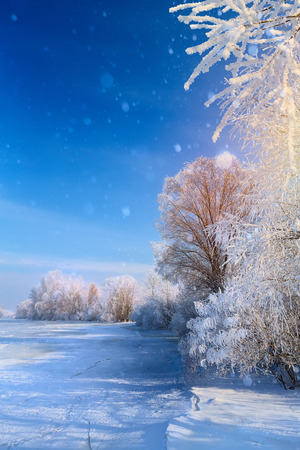 Christmas winter Landscape with Frozen lake and snowy trees Reklamní fotografie