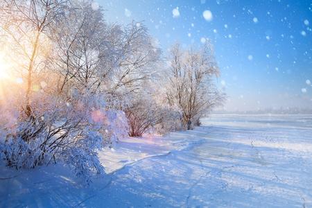 Christmas winter Landscape; Frozen lake and snowy trees Reklamní fotografie
