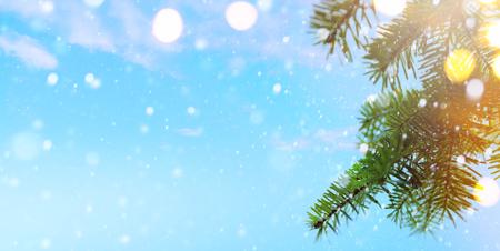 Christmas tree and holidays lights Reklamní fotografie