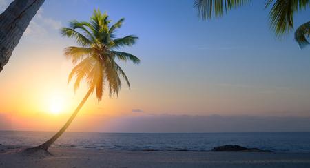 Art Beautiful sunrise over the tropical beach