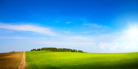 sunny blue sky over spring farmland green field Reklamní fotografie