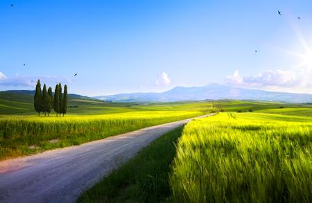 beautiful sunset in spring Tuscany farmland; Italy landscape   Reklamní fotografie
