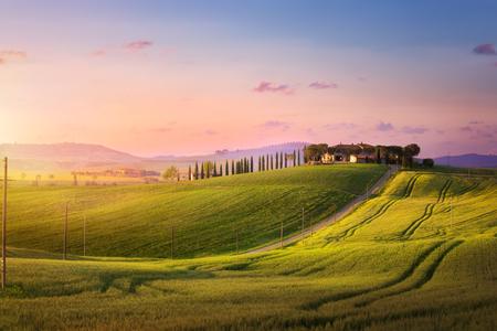 beautiful sunset in Tuscany; Italy landscape Stockfoto - 116454199