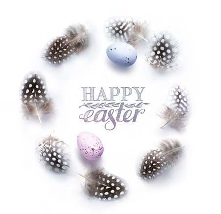 Painted Eggs and birds feather - Easter Background