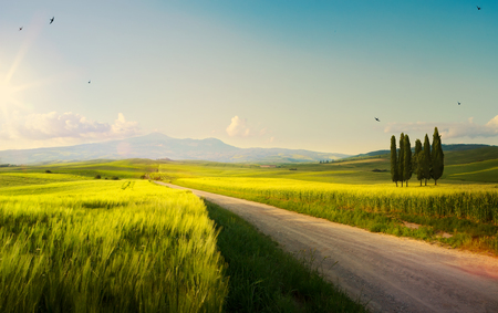 spring farmland and country road;  tuscany countryside rolling hills   Imagens