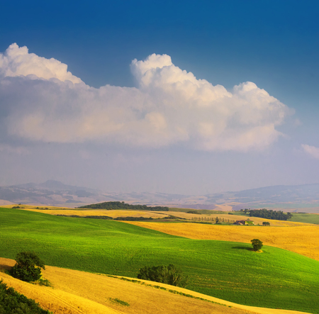 Italian summer countryside landscape – golden and green fields and blue sky