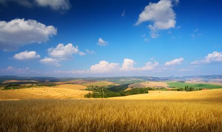 countryside Landscape; summer Tuscany field Reklamní fotografie