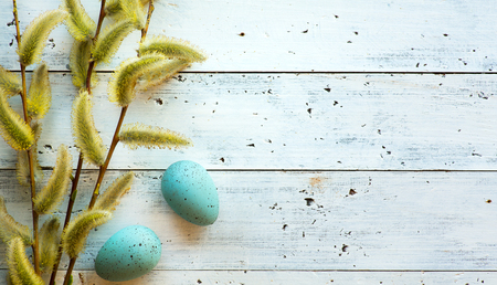 Hello spring; Easter background with fresh flowers and Easter eggs