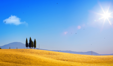 Summer countryside landscape; sunset over rolling hills and Tuscany farmland