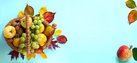Thanksgiving background; basket with autumn fresh Fruit and autumn leaves;