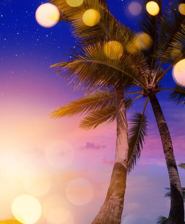 tropical summer beach night party background   Stockfoto