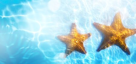 summer tropical beach background; starfish, sand and blue water