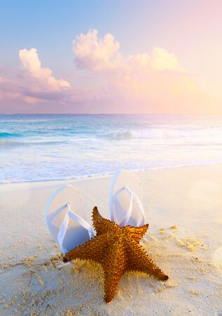 summer tropical beach background; starfish, sand and water edge;