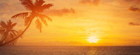 Fond de vacances d'été ; palmiers, silhouette, sur, coucher soleil, plage tropicale