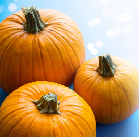 Hello autumn; thanksgiving holiday party background with autumn pumpkin on blue background Stockfoto