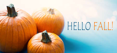 Hello autumn banner; thanksgiving holiday party background with autumn pumpkin on blue background