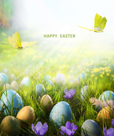 Happy Easter card or banner background; Spring flowers and easter eggs