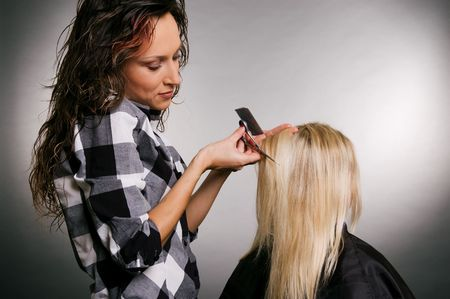 beautiful hairdresser working with blonde Stock Photo - 3704630