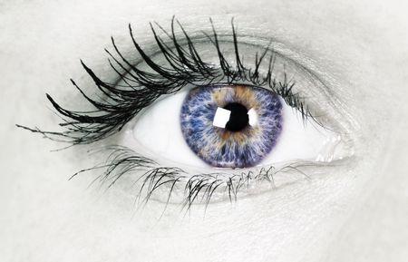 macro shot of beautiful eye photo