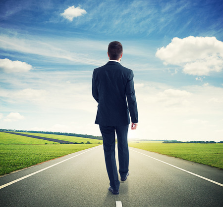 ways to go: back view of walking businessman on the road over beautiful landscape