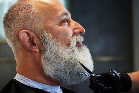 barber scissors: sideview portrait of grey-haired man with long beard in barber shop. barber cutting beard with scissors Stock Photo
