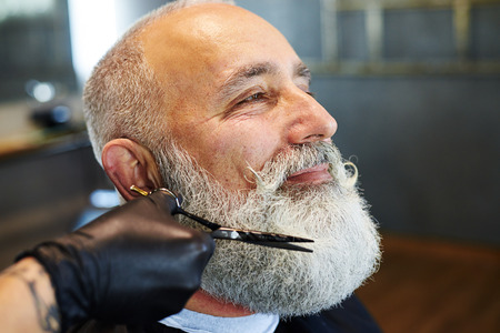 barber scissors: sideview portrait of grey-haired man in barber shop. barber cutting beard with scissors Stock Photo