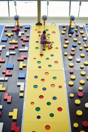 reached: Young woman in safety harness has almost reached the top of the climbing wall in indoor rock-climbing center