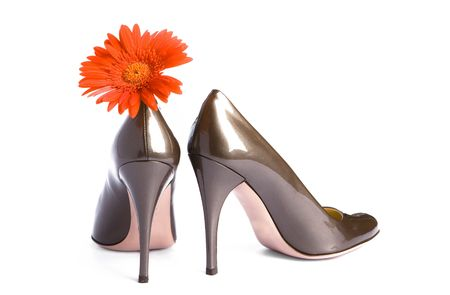 New elegant beige-gold shoes on a heel-stilete and a bright flower photo