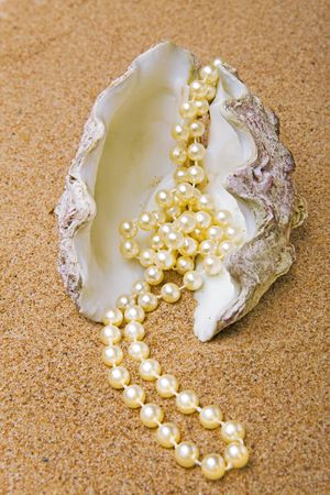 The cockleshell with a pearl beads lies on sand photo