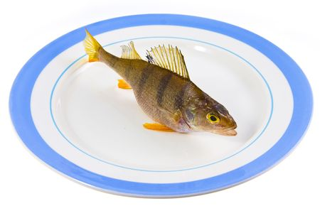 fish on a plateau Stock Photo - 6053317