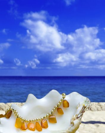 shell lays with amber bead on background of ocean and sky photo