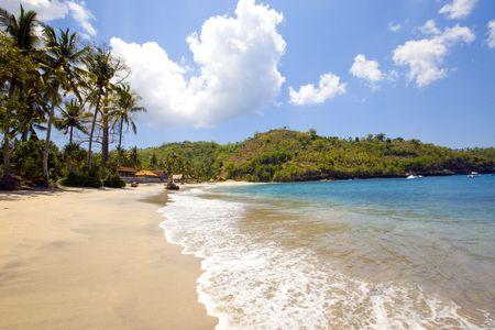 Island in ocean, sand beach, palm trees Stock Photo - 6770842