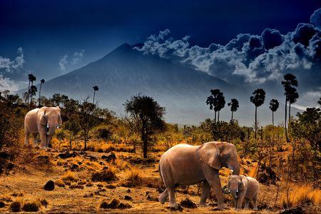 Elephants on background of mountains