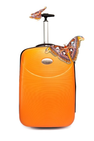 Two huge tropical butterflies on a suitcase Stock Photo - 9072819