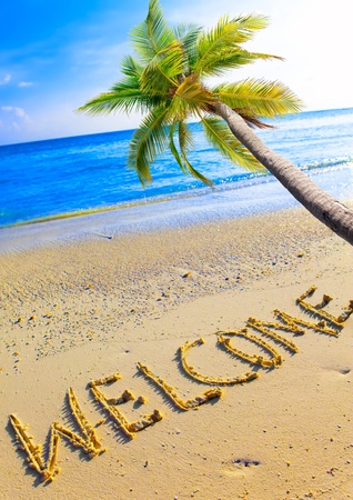 On a beach it is written Welcome and a palm tree over ocean photo
