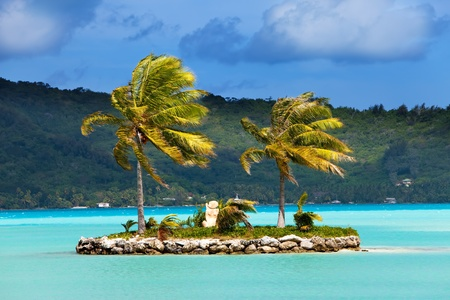 borabora: Palm trees on island in the sea and mountains on a background