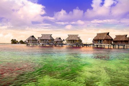 석양에 야자수와 물에 작은 집과 해안 에디토리얼