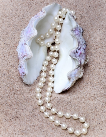 Pearl and shell photo