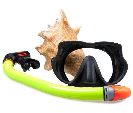 Tube for diving (snorkel), big sea shell and mask photo