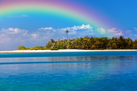 paradise bay: The tropical island with palm trees in the ocean and a rainbow over it