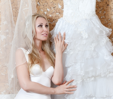The beautiful woman, the bride, with a veil and a wedding dress Stock Photo