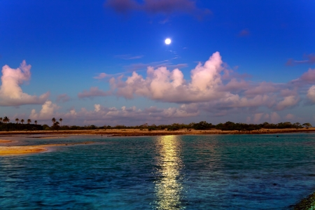 Night. The moon over the sea and reflection in water.   photo