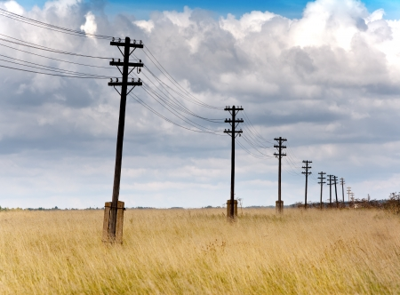 mains: Old wooden poles - the line of electricity transmissions - in the field