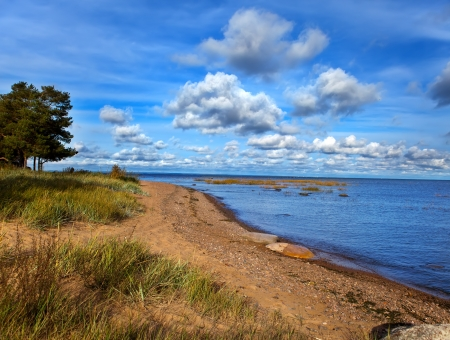 Russia. sandy coast of the Gulf of Finland photo
