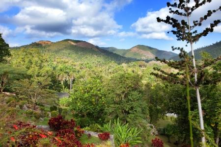 soroa: park of Soroa (Jardin Botanico Orquideario Soroa), Cuba Stock Photo