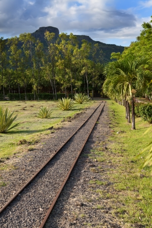 gage: The ancient narrow gage railwayin tropical park, Mauritius   Stock Photo