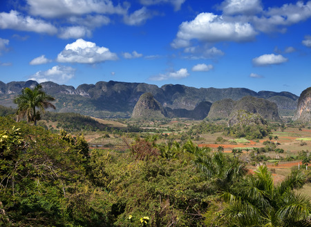 Cuba  Tropical nature of Vinales Valley  photo
