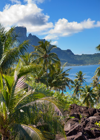 borabora: Azure lagoon of island BoraBora, Polynesia. Mountains, the sea, palm trees