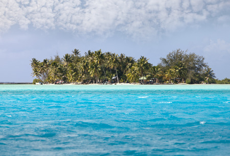 borabora: Palm trees on island in the sea Stock Photo