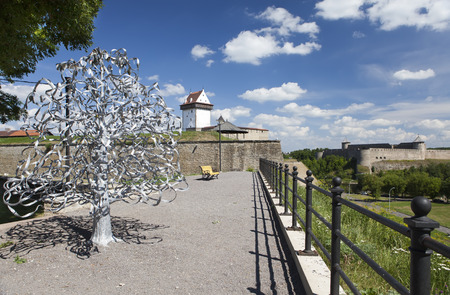 attach: Wedding tree. Narva, Estonia. The wedding day attach leaflets with the names